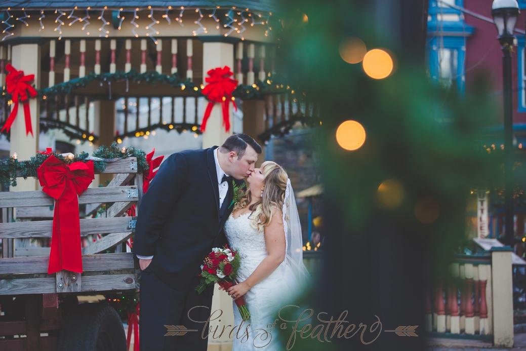 Penn S Peak Wedding Photographer Jim Thorpe Pa Wedding
