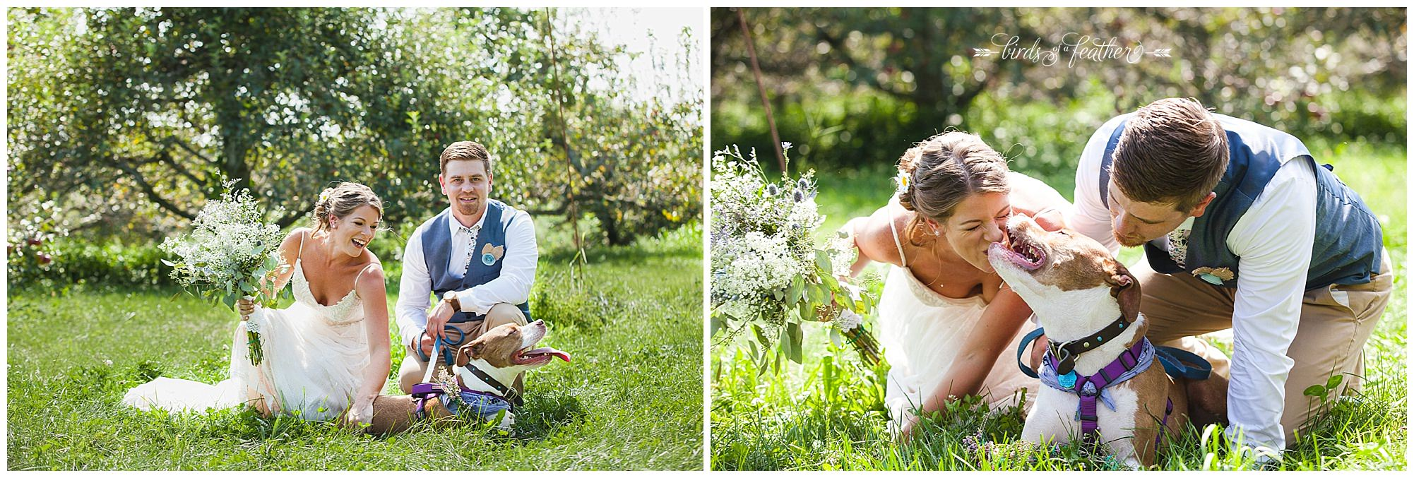 Birds of a Feather Photography Rodale Institute Kutztown Pa Wedding Photographer 14
