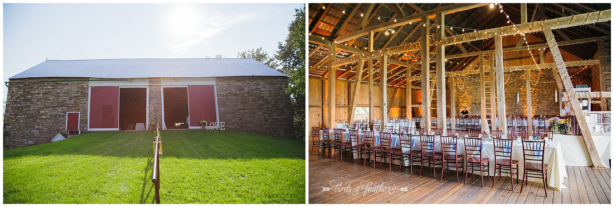 Birds of a Feather Photography Rodale Institute Kutztown Pa Wedding Photographer 30