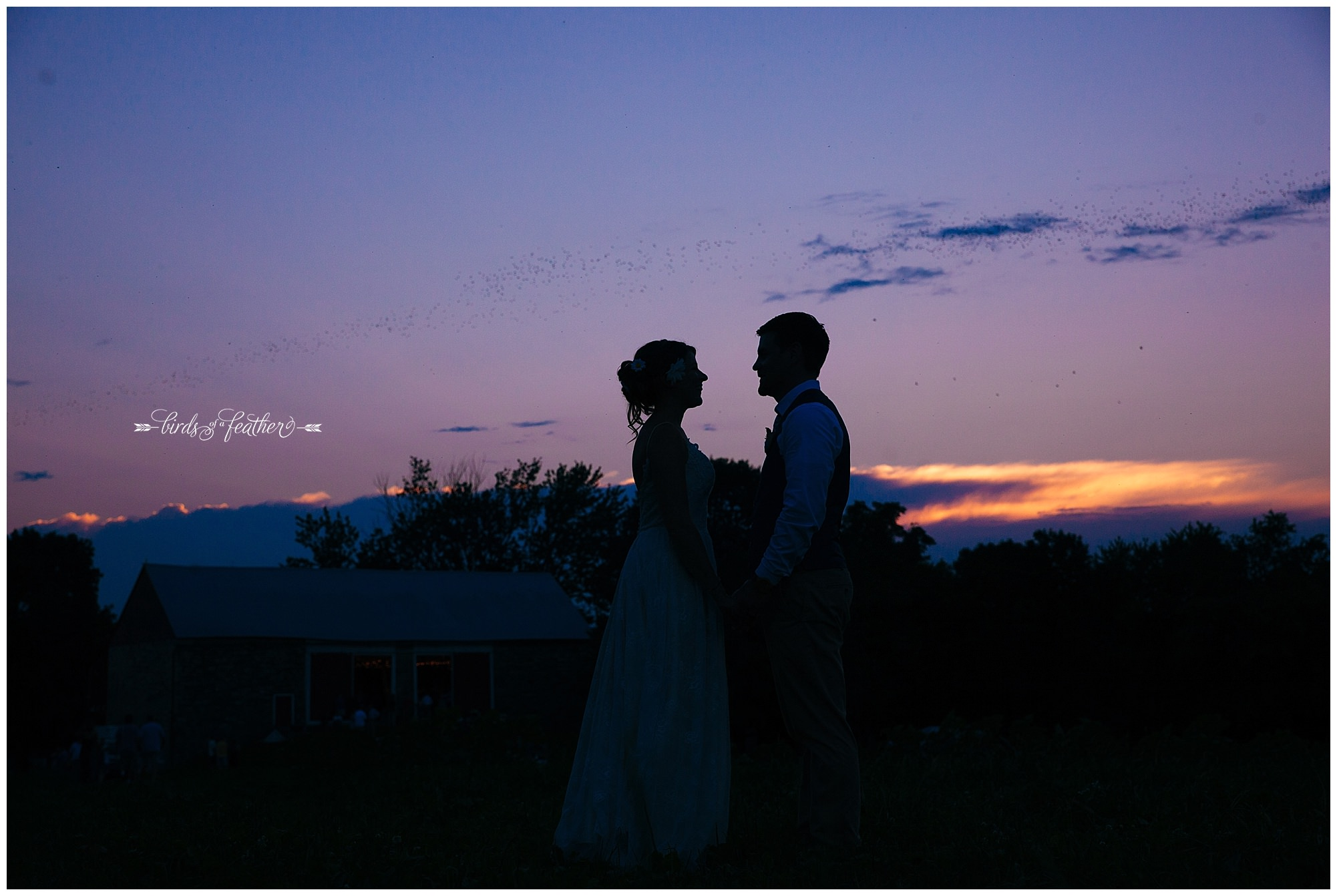 Birds of a Feather Photography Rodale Institute Kutztown Pa Wedding Photographer 43