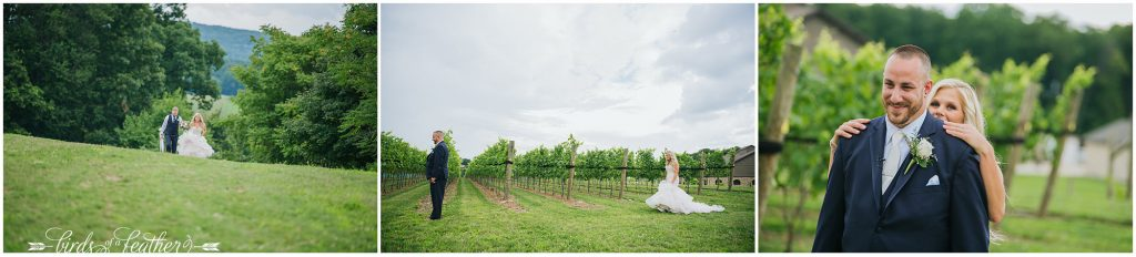 Birds of a Feather Photography Folino Estate Winery Easton Pa Wedding Photographer 012