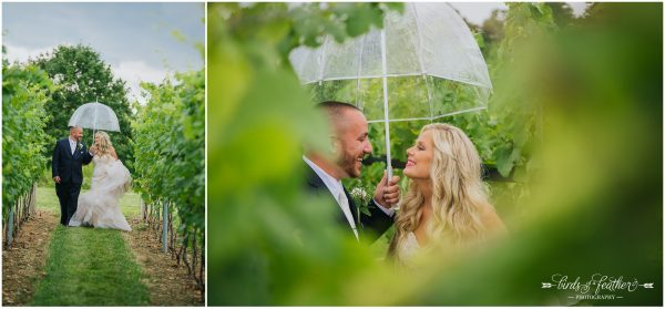 Birds of a Feather Photography Folino Estate Winery Easton Pa Wedding Photographer 015