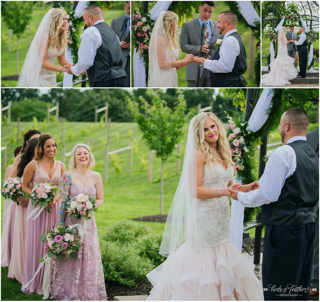 Birds of a Feather Photography Folino Estate Winery Easton Pa Wedding Photographer 031