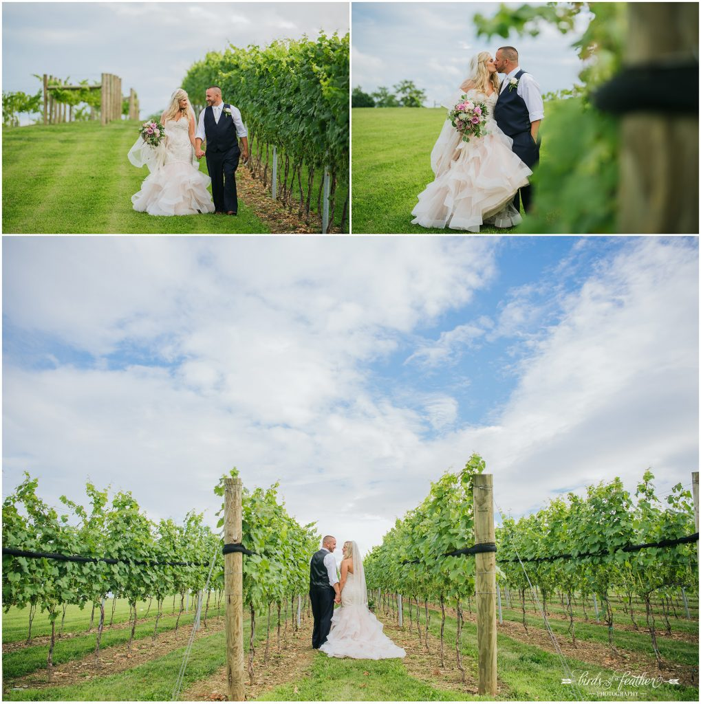 Birds of a Feather Photography Folino Estate Winery Easton Pa Wedding Photographer 036