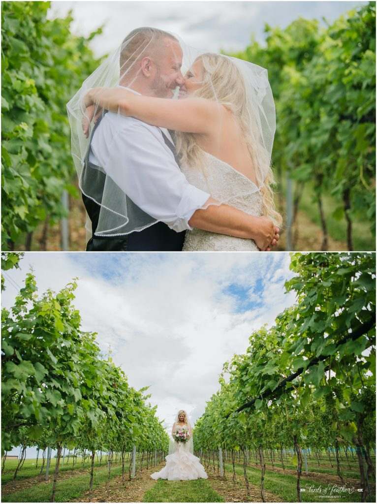 Birds of a Feather Photography Folino Estate Winery Easton Pa Wedding Photographer 040