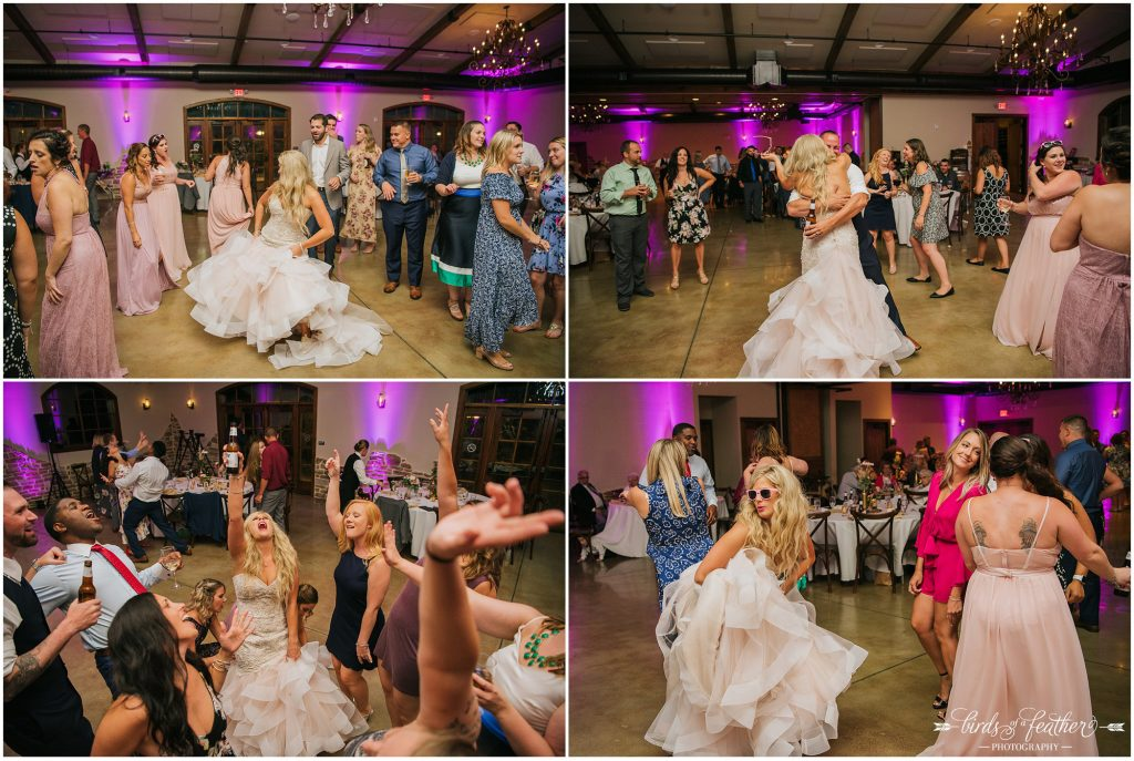 Birds of a Feather Photography Folino Estate Winery Easton Pa Wedding Photographer 056